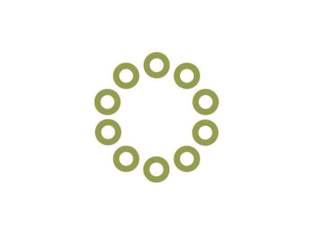 Aspen Institute   Global Leaders Council
